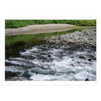 River rapids over rocks postcard