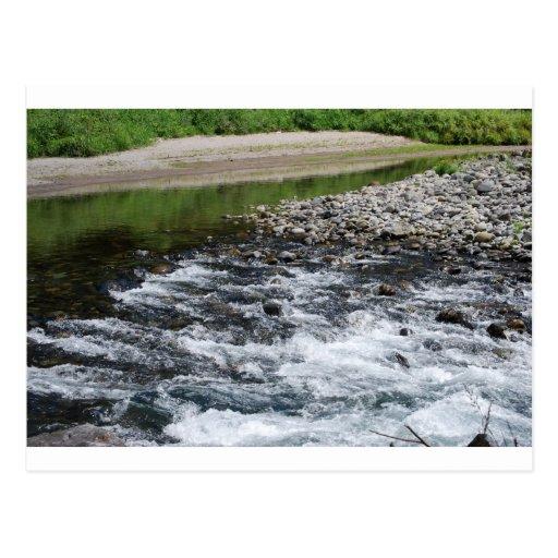 River rapids over rocks postcards