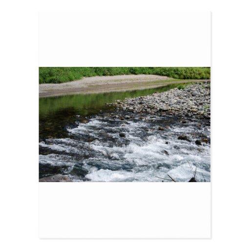 River rapids over rocks post cards