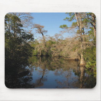 River Reflections Mouse Mat