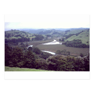 river running through.jpg postcard