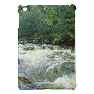 River Rushing Salmon Princess Royal Canada iPad Mini Cases