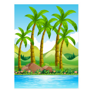River scene with coconut trees postcard