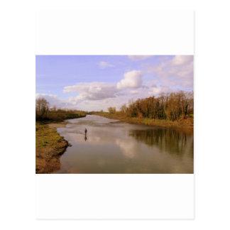 River Shannon Postcard