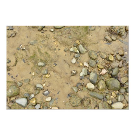 river shore texture sand stones shells beach photo