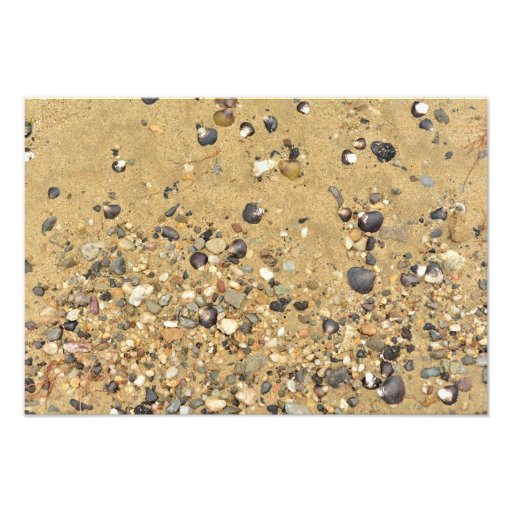 river shore texture sand stones shells beach photo print