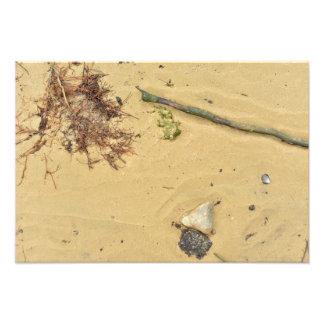 river shore texture sand stones shells beach sea photo print