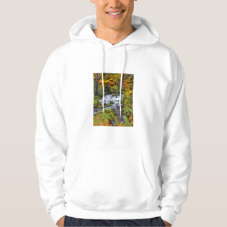 River through forest, Fall, Oregon Hoodie
