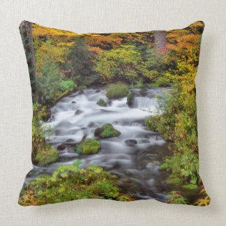River through forest, Fall, Oregon Throw Pillow