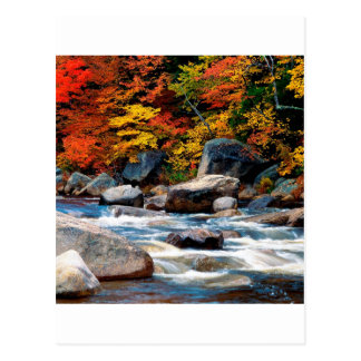 River White New Hampshire Postcard