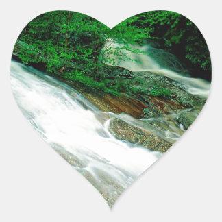 River Wilson Pisgah Forest Carolina Heart Sticker