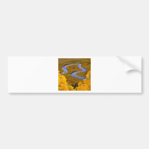 River Winding Gunnison Forest Colorado Bumper Sticker