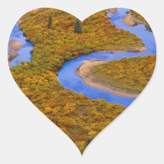 River Winding Gunnison Forest Colorado Heart Sticker