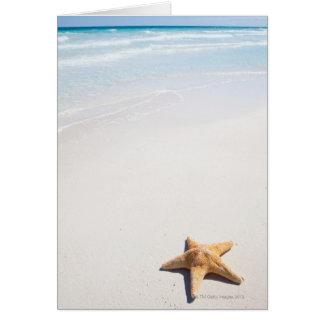 Riviera Maya Card