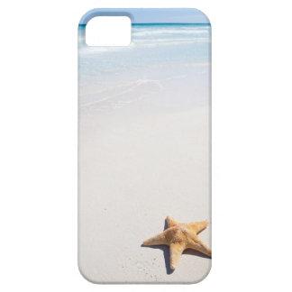 Riviera Maya iPhone 5 Covers