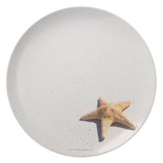 Riviera Maya Plate