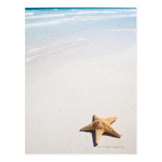 Riviera Maya Post Card