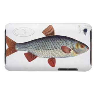 Roach (Cyprinus Rutilis) plate II from 'Ichthyolog iPod Case-Mate Case
