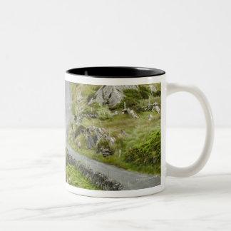Road between Ballaghacahreen and Caherkeen. Coffee Mug