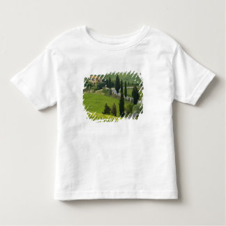 Road from Pienza to Montepulciano, 2 Toddler T-Shirt