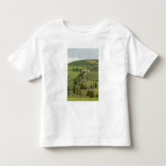 Road from Pienza to Montepulciano, Toddler T-Shirt