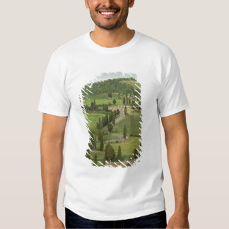 Road from Pienza to Montepulciano, Tshirts