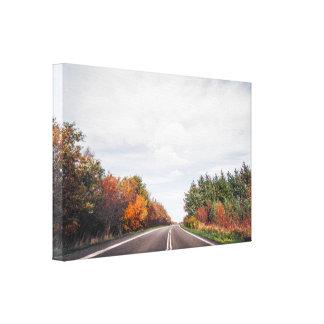 Road going through an autumn landscape canvas print