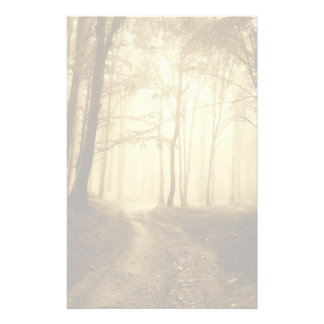 Road in a dark forest with fog stationery