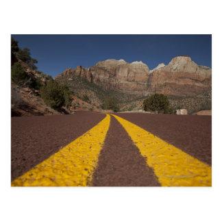 Road-kill viewpoint postcard