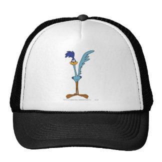 Road Runner in Color Mesh Hats