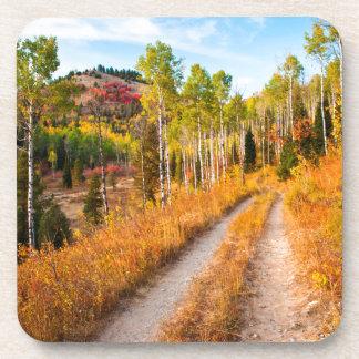 Road Through Autumn Colors Coaster
