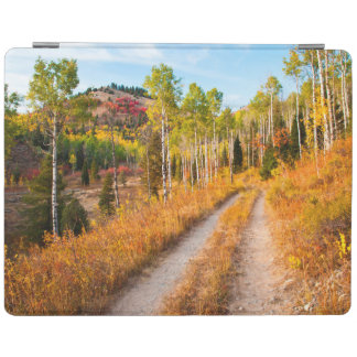 Road Through Autumn Colors iPad Cover