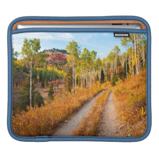 Road Through Autumn Colors iPad Sleeve
