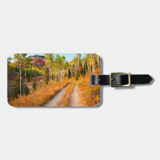 Road Through Autumn Colors Luggage Tag