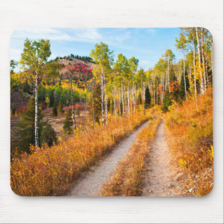 Road Through Autumn Colors Mouse Mat