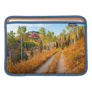 Road Through Autumn Colors Sleeve For MacBook Air