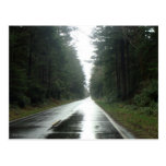 Road to Eternity Postcard
