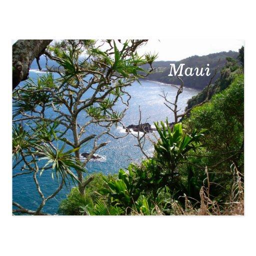 Road to Hana, Maui, Hawaii Postcard