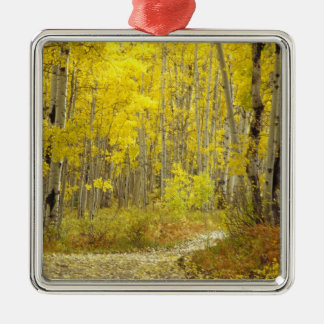 Road with autumn colors and aspens in Kebler 2 Christmas Ornament