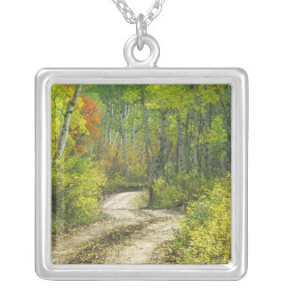Road with autumn colors and aspens in Kebler Silver Plated Necklace