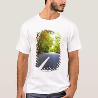 Road with Trees in Acadia National Park T-Shirt