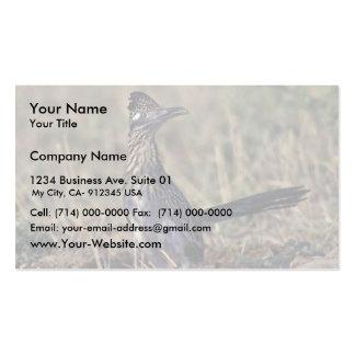 Roadrunner Business Card Template