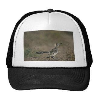 Roadrunner Hat