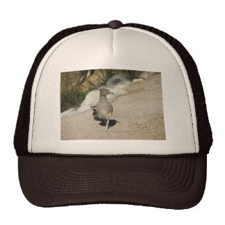 Roadrunner Mesh Hat