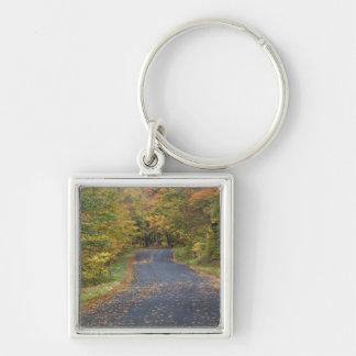 Roadside fall foliage, Southern Vermont, USA Key Ring