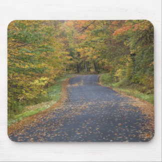 Roadside fall foliage, Southern Vermont, USA Mouse Mat