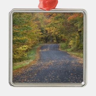 Roadside fall foliage, Southern Vermont, USA Silver-Colored Square Decoration