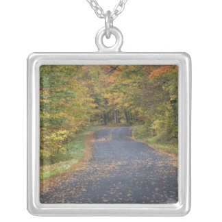 Roadside fall foliage, Southern Vermont, USA Silver Plated Necklace