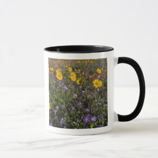 Roadside wildflowers in Texas, spring 2 Mug