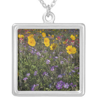 Roadside wildflowers in Texas, spring 2 Square Pendant Necklace